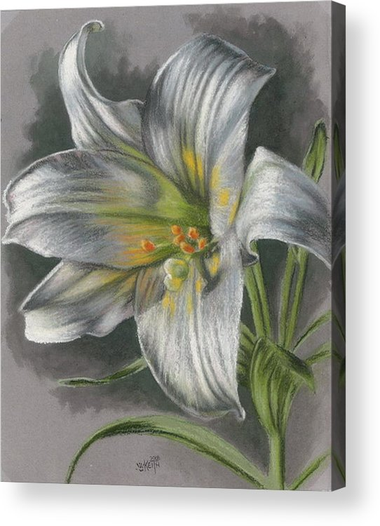 Easter Lily Acrylic Print featuring the mixed media Arise by Barbara Keith