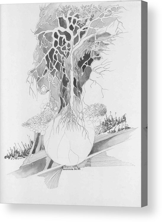 Surreal Acrylic Print featuring the drawing Ball And Tree by Padamvir Singh