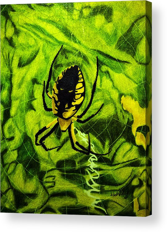 Nature Acrylic Print featuring the painting Black And Yellow Agriope by Wade Clark