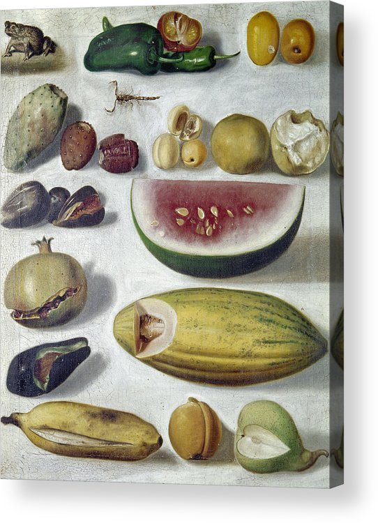 1874 Acrylic Print featuring the photograph Bustos: Still Life, 1874 by Granger