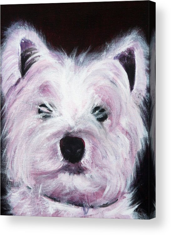 Dog Acrylic Print featuring the painting Cassie by Fiona Jack