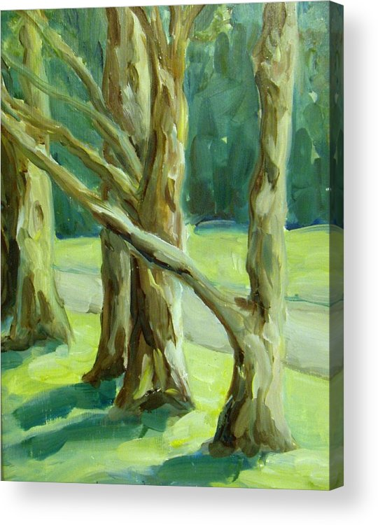 Trees Acrylic Print featuring the painting Cedars In Woodward Park by Linda Vespasian