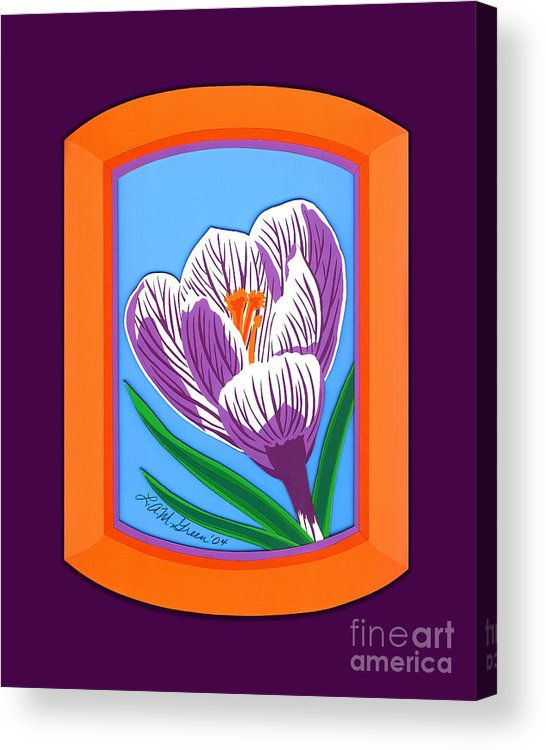 Nature Acrylic Print featuring the drawing Crocus by Lucyna A M Green