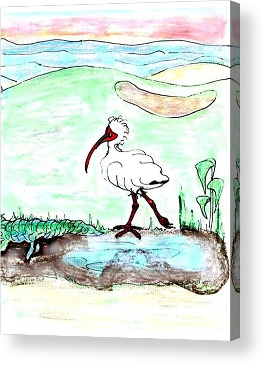 Ibis Acrylic Print featuring the drawing Curious Ibis Stands By by Carol Allen Anfinsen