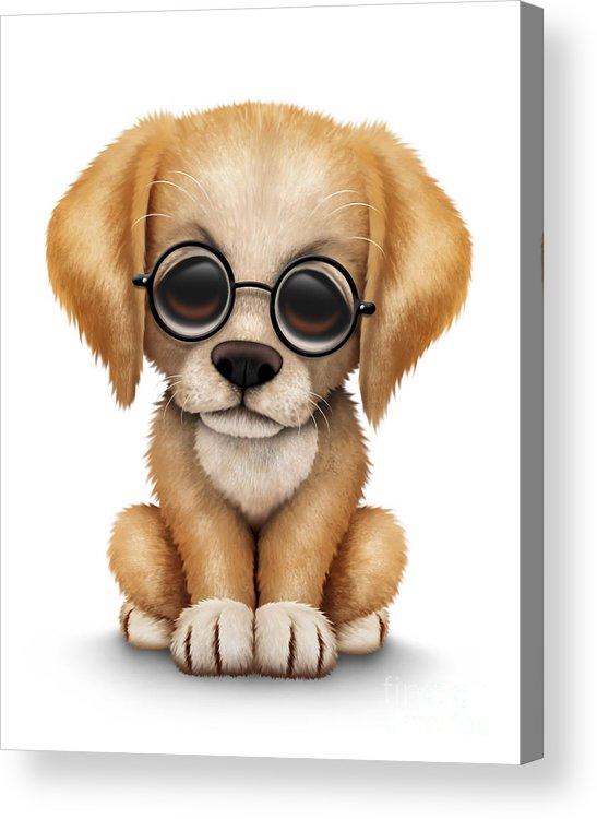 Cute Golden Retriever Puppy Dog Wearing Eye Glasses Acrylic Print