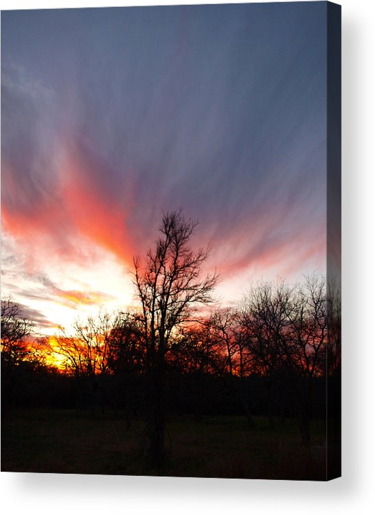 Sunset Acrylic Print featuring the photograph Director by James Granberry