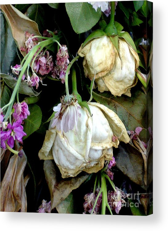 Roses Acrylic Print featuring the photograph Faded Beauty by Valerie Fuqua