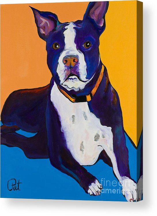 Boston Terrier Acrylic Print featuring the painting Georgie by Pat Saunders-White