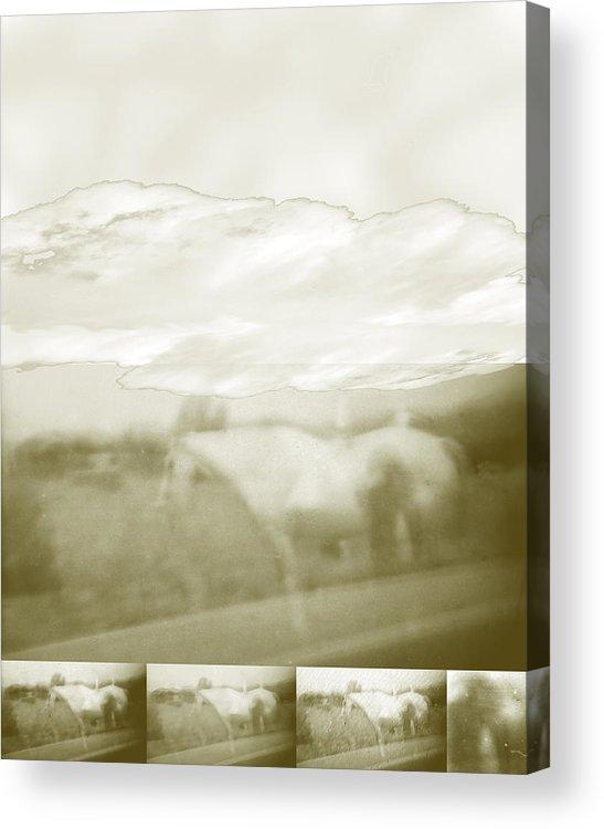 Colorado Acrylic Print featuring the digital art Ghost Horse Colorado by Ann Tracy