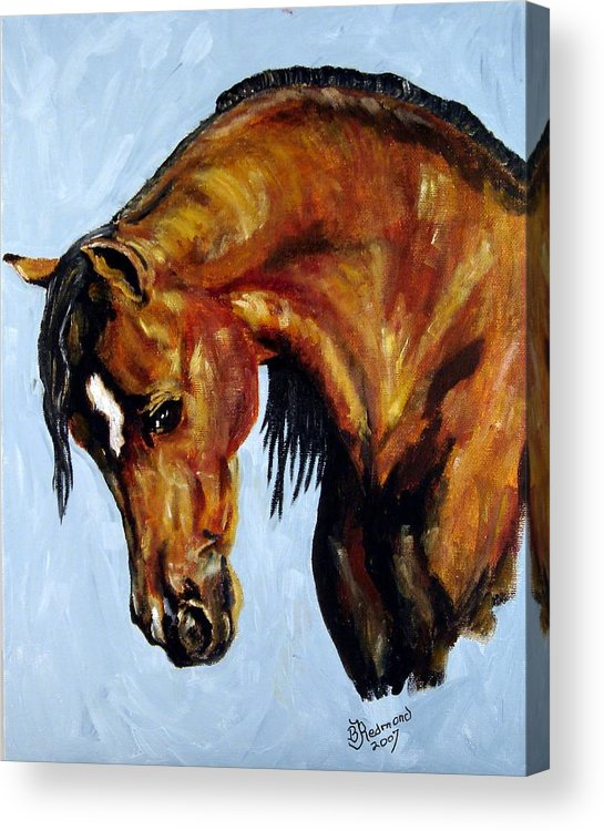 Arabian Horse Painting Acrylic Print featuring the painting Graceful Arabian by BJ Redmond