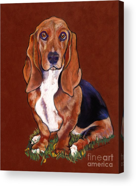Animal Portraits Acrylic Print featuring the pastel Hope by Pat Saunders-White