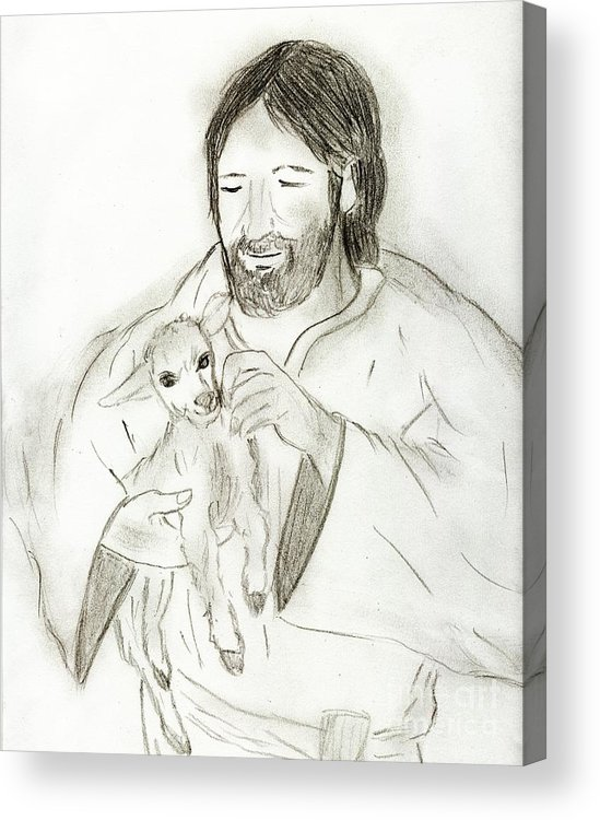 Jesus Acrylic Print featuring the drawing Jesus Holding Lamb by Sonya Chalmers