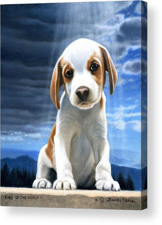 Dog Beagle Puppy Sunray Painting Original Blue Sky Acrylic Print featuring the painting King Of The World-beagle Puppy by Daniel Pierce