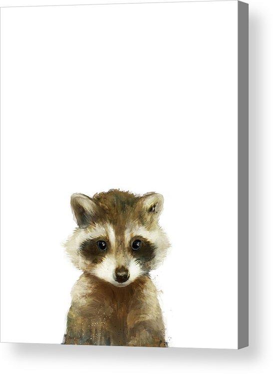 Raccoon Acrylic Print featuring the painting Little Raccoon by Amy Hamilton