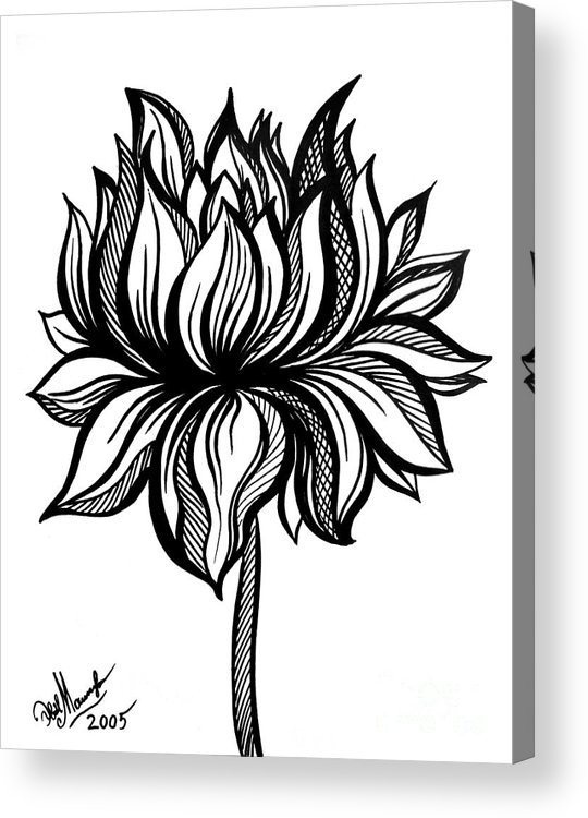 Lotus Flower. Black-white Drawing Acrylic Print by Sofia Metal Queen