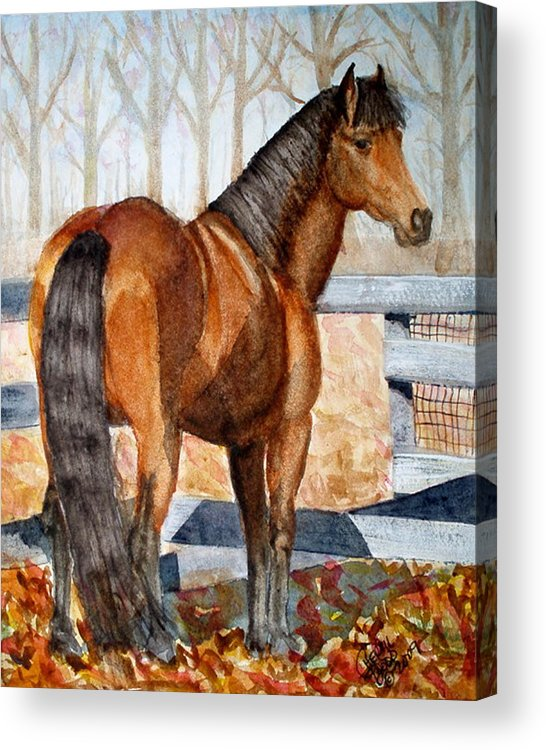 Morgan Acrylic Print featuring the painting Mystic In Her Paddock by Cheryl Dodd
