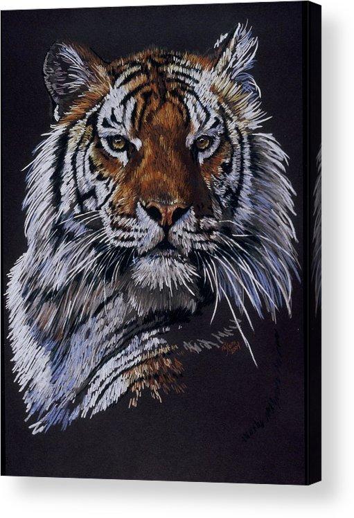 Tiger Acrylic Print featuring the drawing Nakita by Barbara Keith