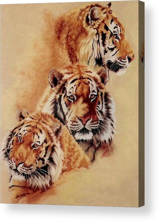 Tiger Acrylic Print featuring the pastel Nanook by Barbara Keith
