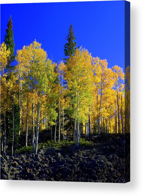 Fall Colors Acrylic Print featuring the photograph Nevada Fall by Marty Koch