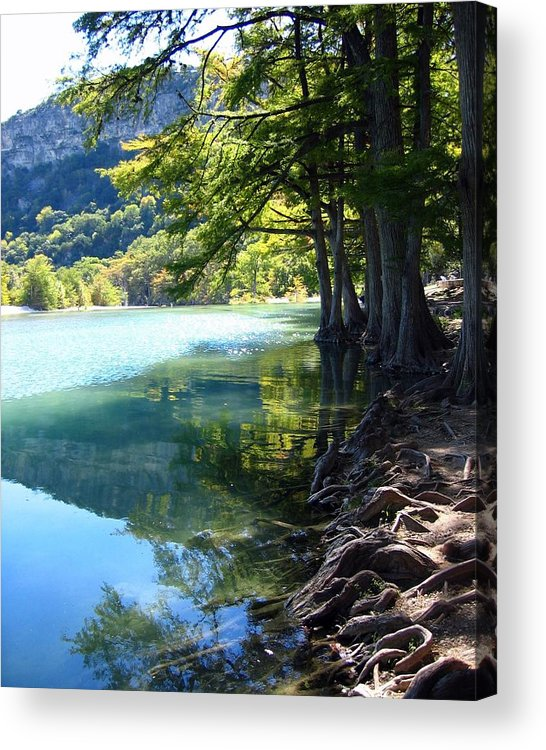 Photograph Acrylic Print featuring the photograph Old Baldy by Lindsey Orlando