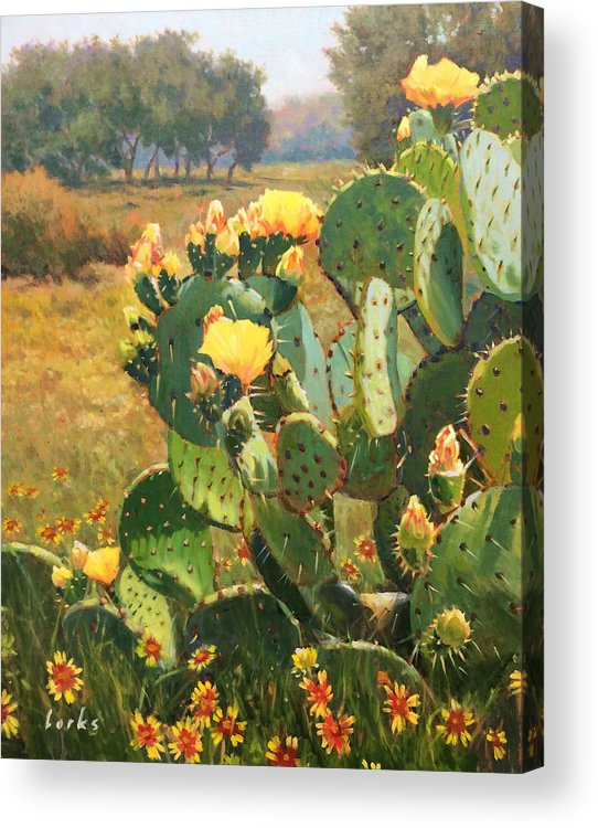 Cactus Acrylic Print featuring the painting Opuntia In Bloom by David Forks