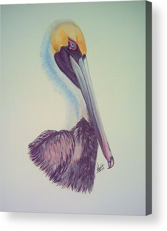 Pelican Acrylic Print featuring the painting Pelican Prince by Kathern Welsh