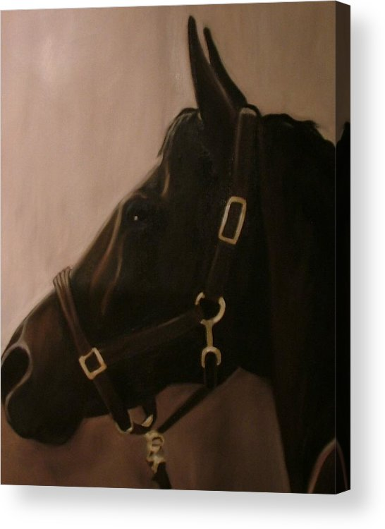 Horse Acrylic Print featuring the painting Pocketchange by Donna Thomas