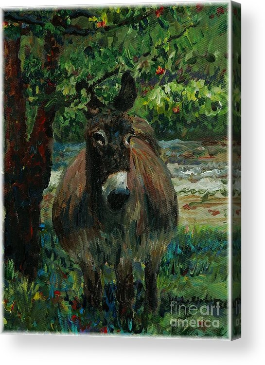 Donkey Acrylic Print featuring the painting Provence Donkey by Nadine Rippelmeyer