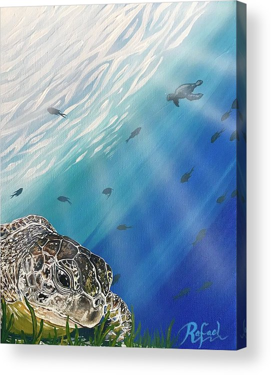 Sea Turtles Turtle Island Paintings Painting Art Artwork Canvas Colors Colorful Blue Red Green Yellow Purple Pink Key West Acrylic Print featuring the painting Rest Time by Rafael Medina