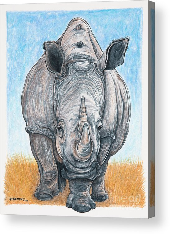 Rhino Acrylic Print featuring the drawing Roaming Giant by Stephen Taylor