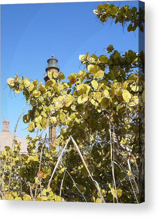 Florida Acrylic Print featuring the photograph Sanibel Lighthouse by Chris Andruskiewicz
