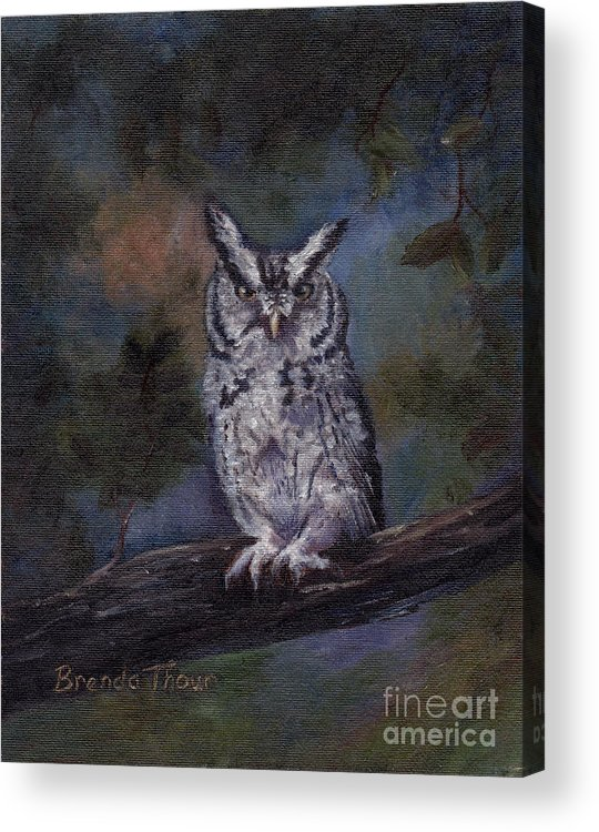 Owl Acrylic Print featuring the painting Screech Owl by Brenda Thour