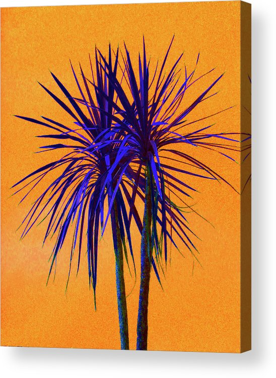 Palm Acrylic Print featuring the photograph Silhouette On Orange by Margaret Saheed