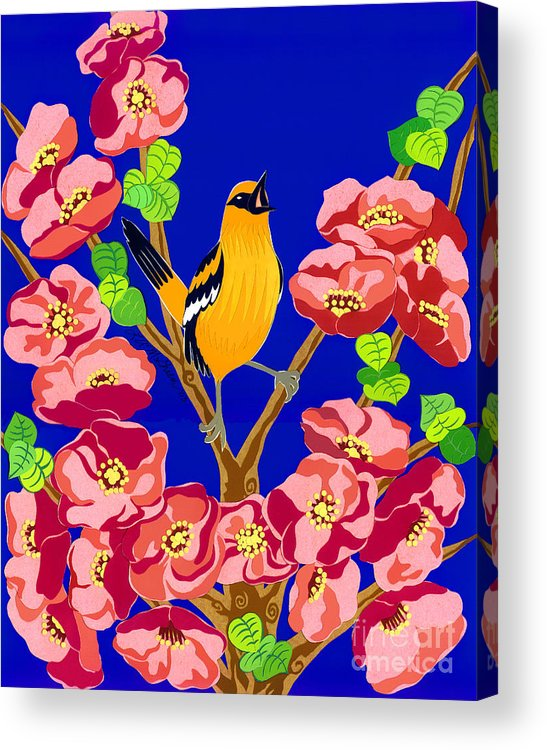 Nature Acrylic Print featuring the drawing Singing Oriole by Lucyna A M Green