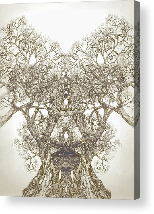 Tree Art Acrylic Print featuring the digital art Tree 20 Hybrid 1 by Brian Kirchner