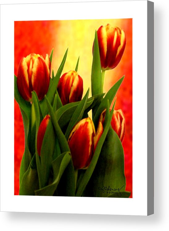 Tulips Acrylic Print featuring the mixed media Tulips Jgibney Signature 5-2-2010 Greenville Sc The Museum Zazzle For Faa20c by jGibney The MUSEUM Zazzle Gifts