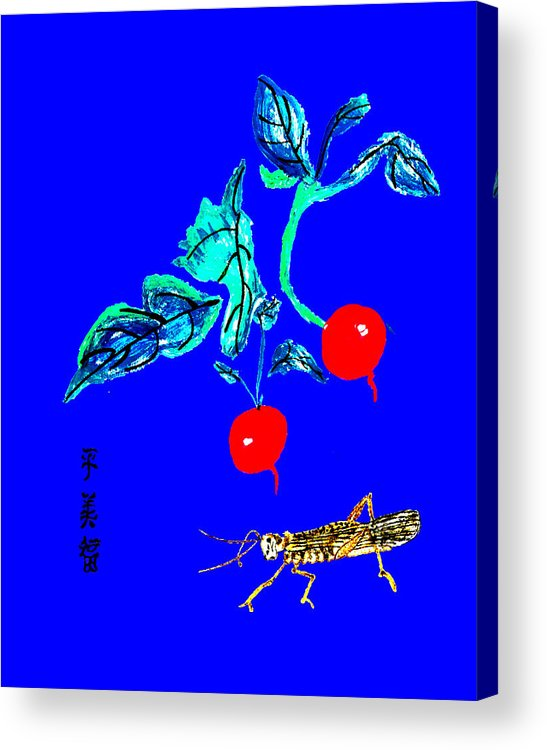 Chinese Acrylic Print featuring the photograph Two Radishes And A Grasshopper by Merton Allen