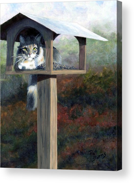 Cat Acrylic Print featuring the painting Waiting For Dinner by Pat Burns