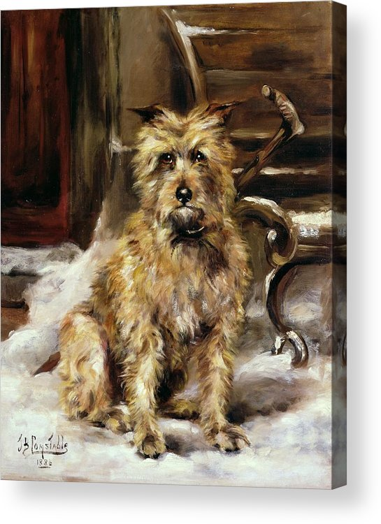 Waiting Acrylic Print featuring the painting Waiting For Master  by Jane Bennett Constable