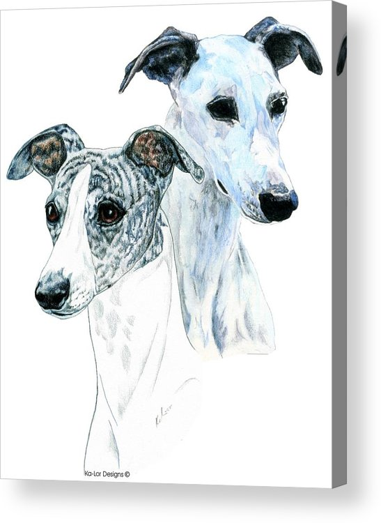 Whippet Acrylic Print featuring the painting Whippet Pair by Kathleen Sepulveda