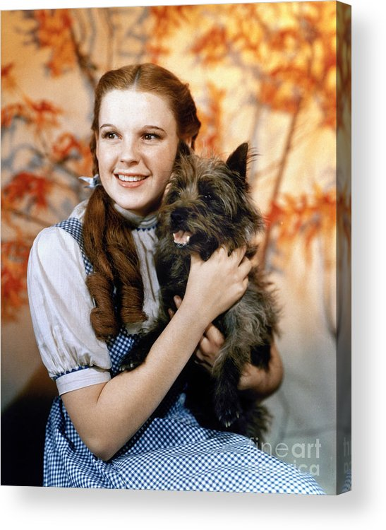1939 Acrylic Print featuring the photograph Wizard Of Oz, 1939 by Granger