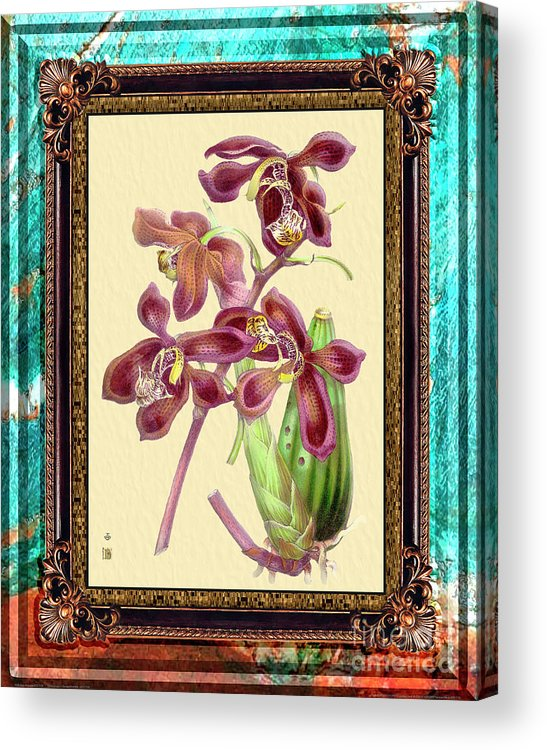 Marble Acrylic Print featuring the mixed media Vintage Orchid Antique Design Marble Caribbean-blue by Baptiste Posters