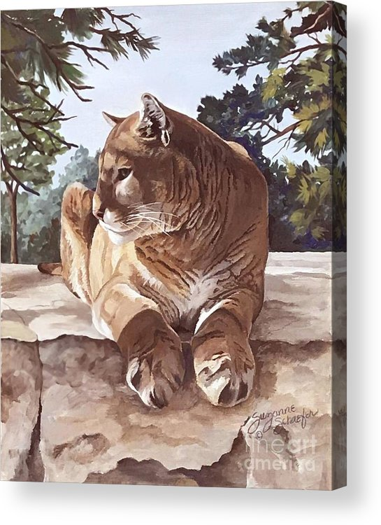 Cougar Acrylic Print featuring the painting Cougar Outlook by Suzanne Schaefer