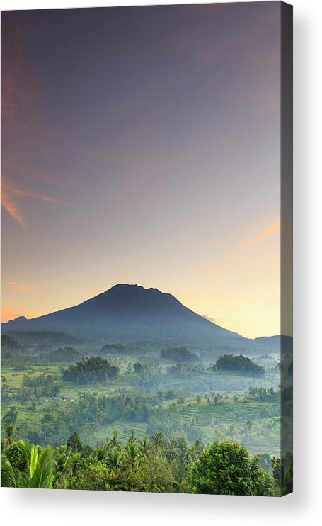 Scenics Acrylic Print featuring the photograph Indonesia, Bali, Rice Fields And by Michele Falzone