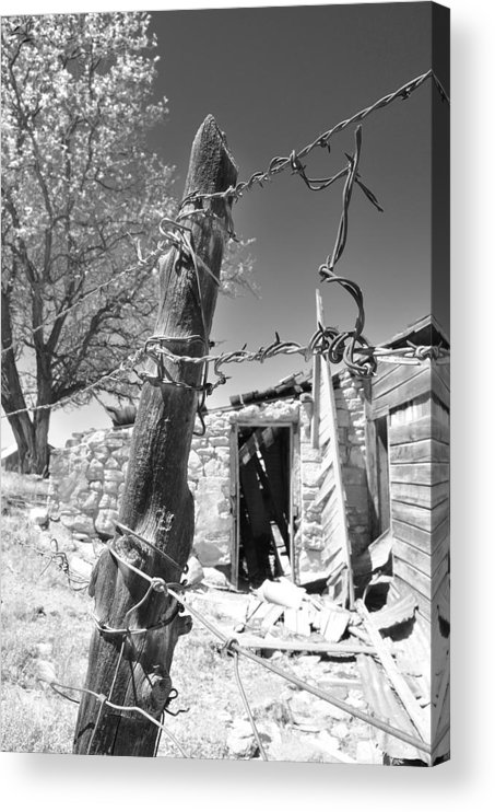 Nevada Acrylic Print featuring the photograph Don't Fence Me In II by Everett Bowers
