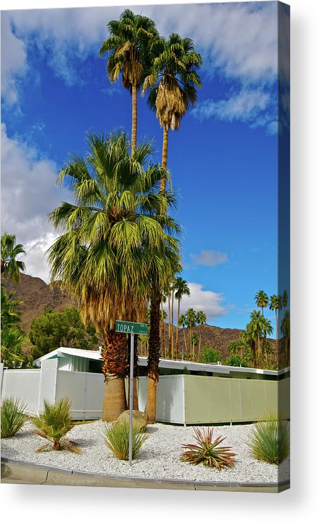 Fan Palm Tree Acrylic Print featuring the photograph Mountains, Plants & Mid-century Home In by Jaylazarin