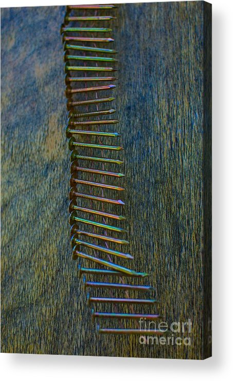 Acrylic Print featuring the photograph Strippers Night Out by The Stone Age