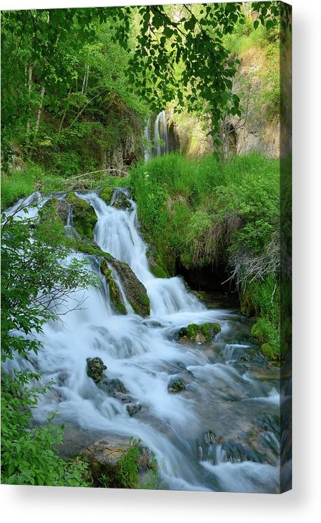 Scenics Acrylic Print featuring the photograph Waterfall In Spearfish Cayon South by Groveb