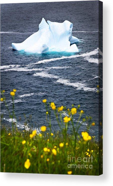 Iceberg Acrylic Print featuring the photograph Melting Iceberg by Elena Elisseeva