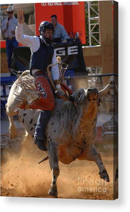Cowboy Acrylic Print featuring the photograph The Dance by Gib Martinez